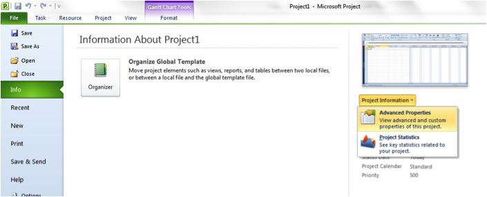 Picture of Advanced Properties in Microsoft Project