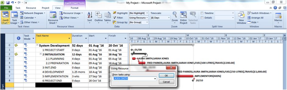 Using the Resource Filter in Microsoft Project