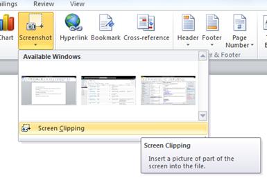 How to take a Screenshot in Word