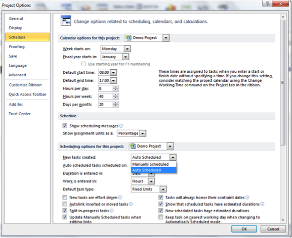 Screenshot of Project Options dialogue box in Microsoft Project
