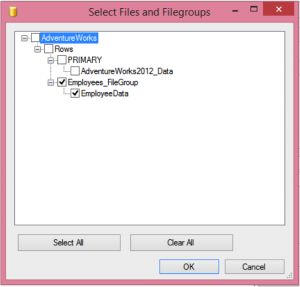 Carrying out Filegroup Backup In GUI Image
