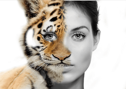 Adobe Photoshop: Morphing Human Faces With Animal Faces