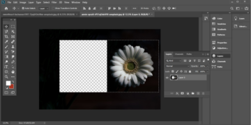 Photoshop: How To Use The Tools In Photoshop CC 2020