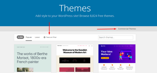 Shows the Themes section of WordPress